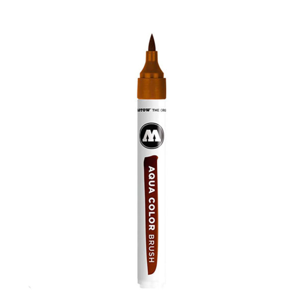 aqua color brush marrom